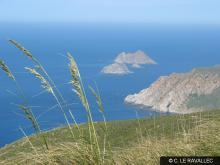 Specially Protected Areas of Mediterranean Importance