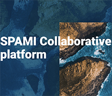 SPAMI Collaborative Platform