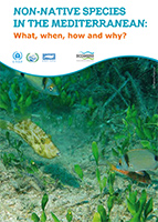 Non-native species in the Mediterranean: what, when, how and why?
